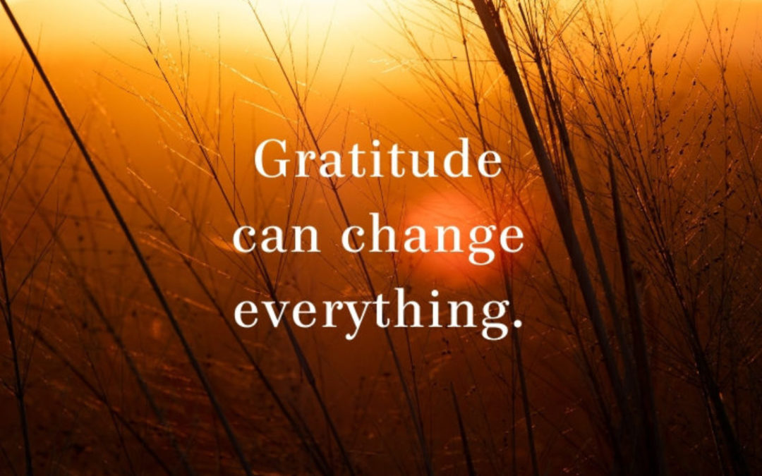 November 2019 is Gratitude Month at Leader's Imago!